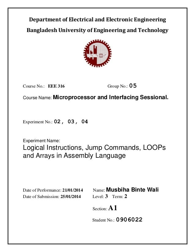 jump instructions in assembly language examples