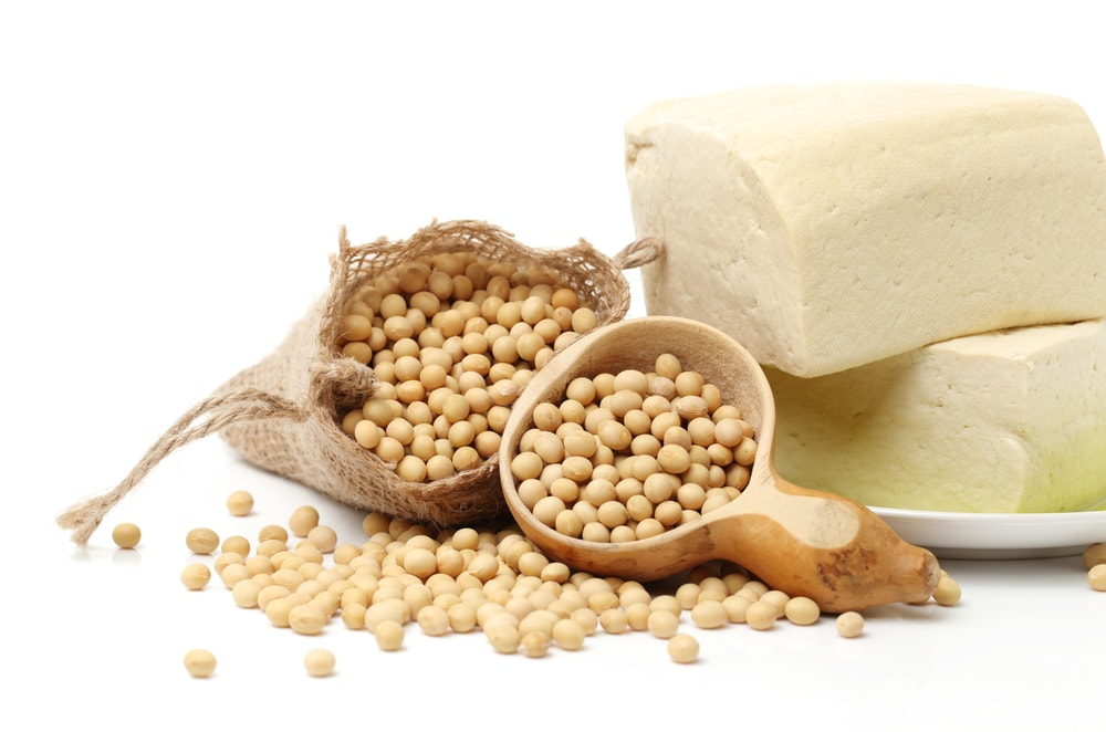 soya beans crushing production pdf