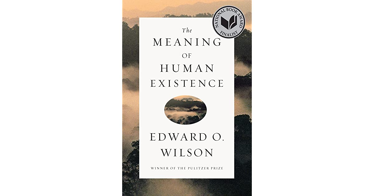 the meaning of human existence pdf